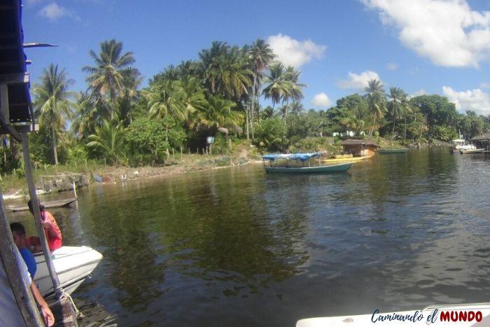 Río en la vuelta a la isla de Morro