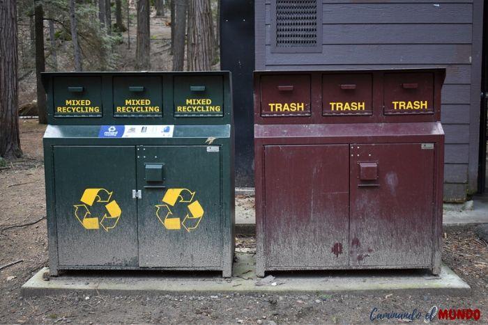 Tachos de basura antiosos