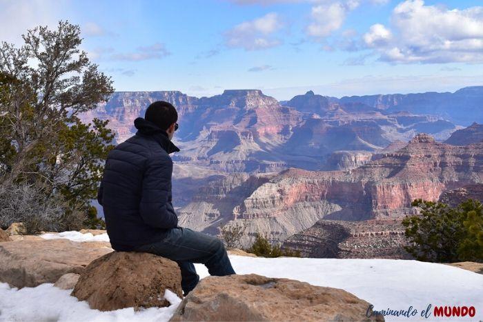 Mirando el gran cañón nevado