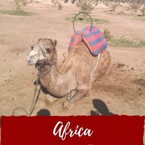 Nuestros viajes por Africa