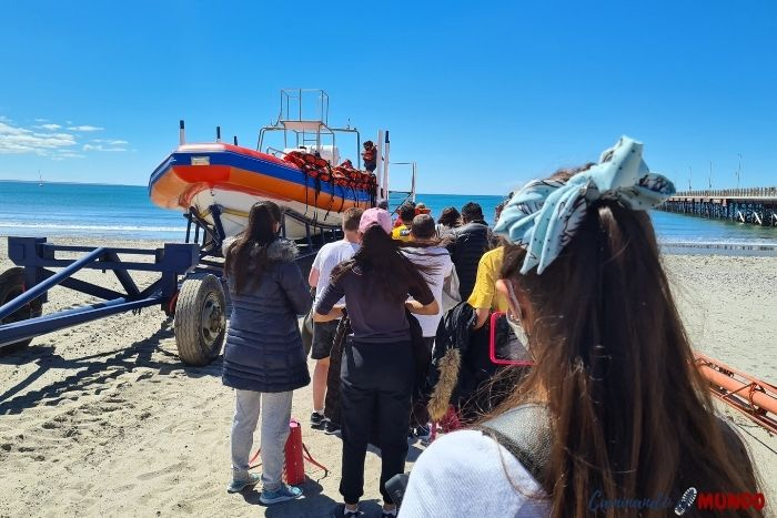 Avisataje de delfines Puerto Madryn