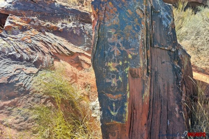 Petroglifos en Talampaya